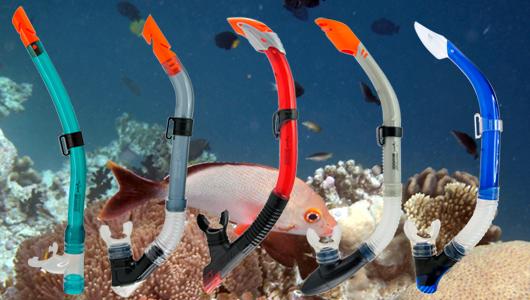 diving_shark_3_1